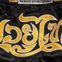 TOP KING MUAY THAI SHORTS TKTBS-061