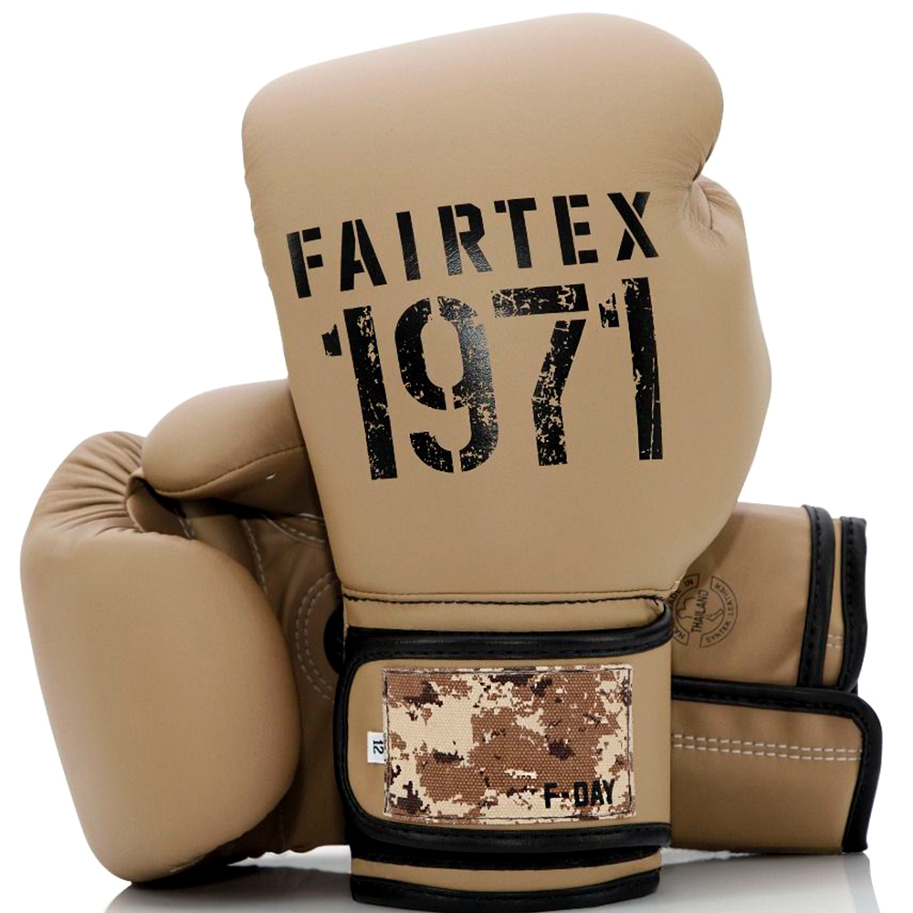 BOXING GLOVES FAIRTEX BGV25 F-DAY 2