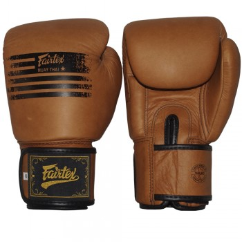 BOXING GLOVES FAIRTEX BGV21 PREMIUM CLASS