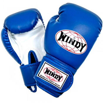 BOXING GLOVES FOR KIDS WINDY BSG BLUE