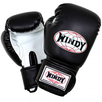 BOXING GLOVES FOR KIDS WINDY BSG BLACK